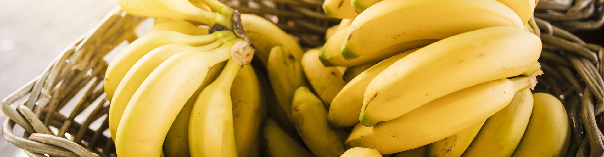 Os benefícios da banana para a saúde